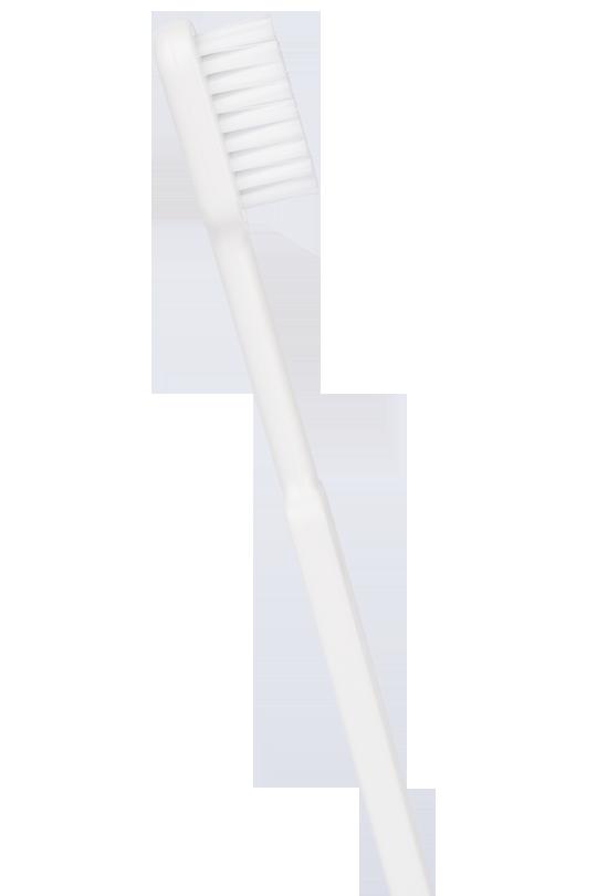 brosse-dents-tete-rechargeable-brosse-dents-ecologique