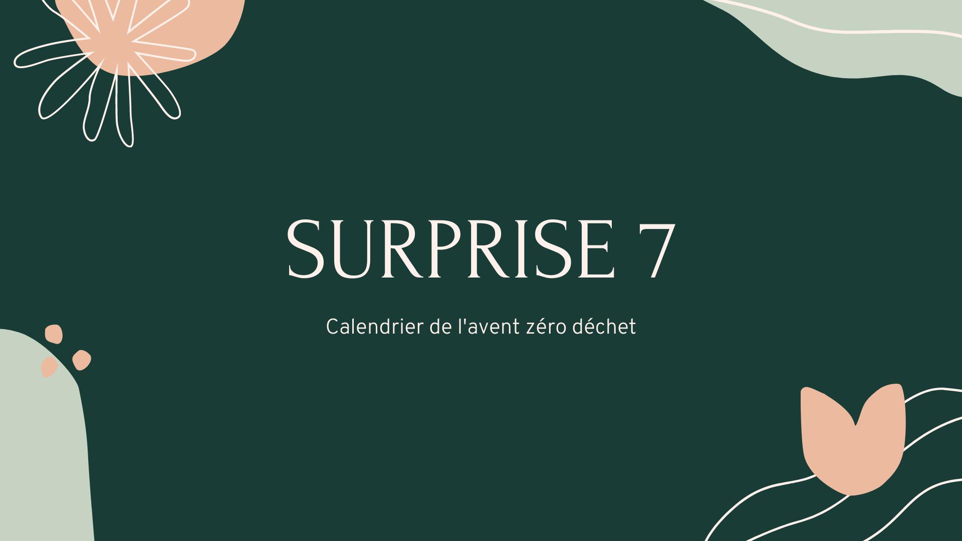 surprise numéro 7 : goupillon