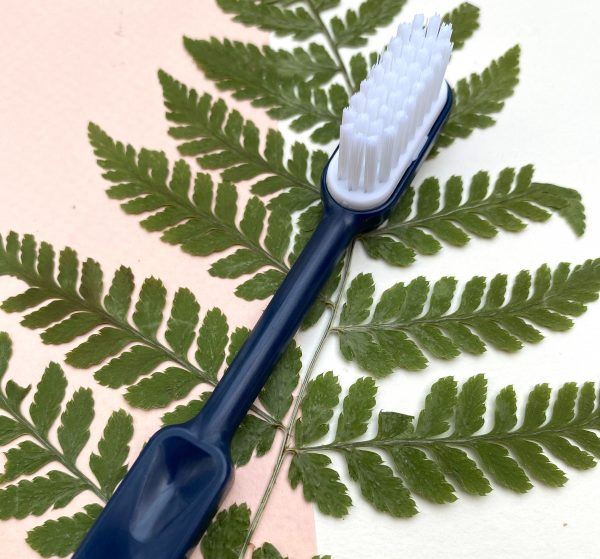 brosse a dents tete rechargeable