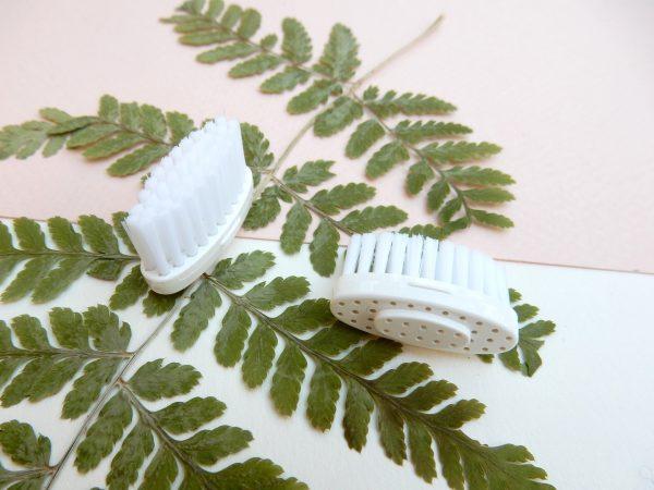 têtes rechargeables pour brosse à dents