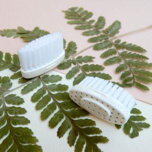 recharges pour brosse à dents
